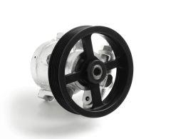 "Sportsman Series 1300 psi Steel Race Pump with 4.5"" Serpentine Pulley"